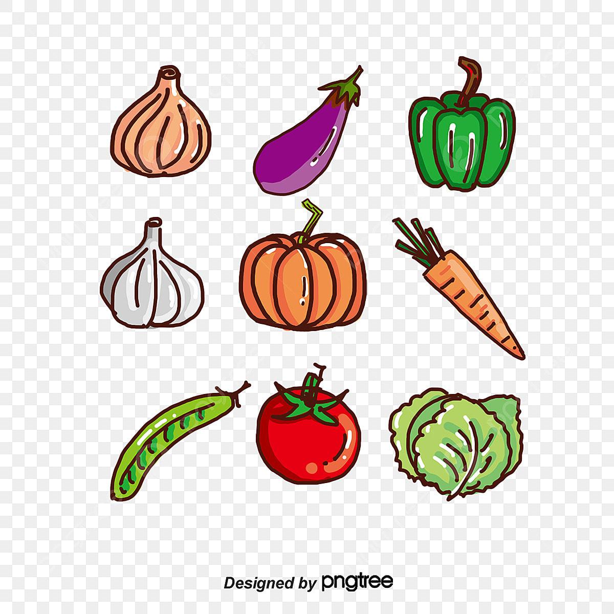 dessin de fruits et de l u00e9gumes fruits et l u00e9gumes les