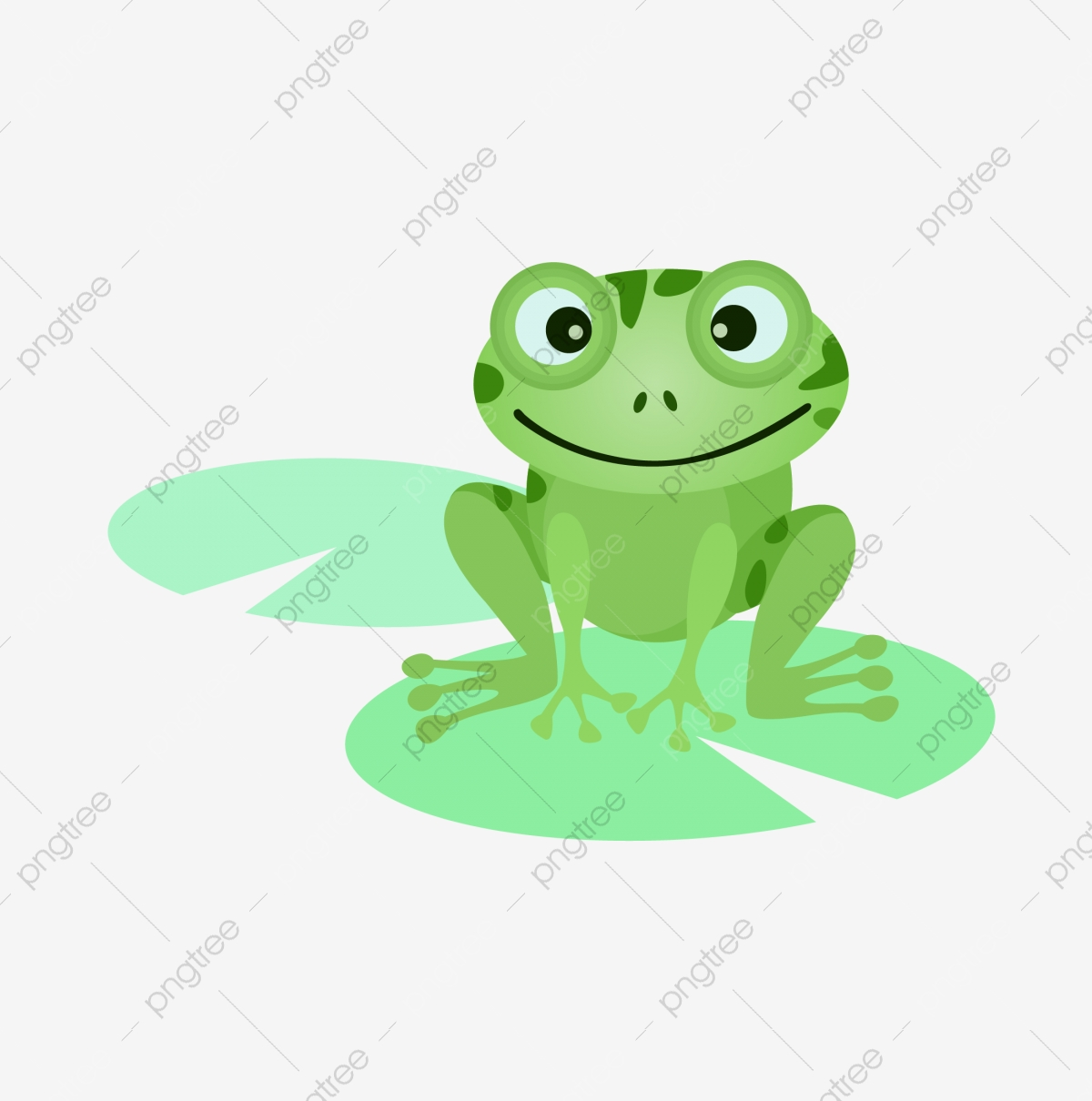 Green Frog, Frog Clipart, Frog, Cartoon PNG Transparent Image and