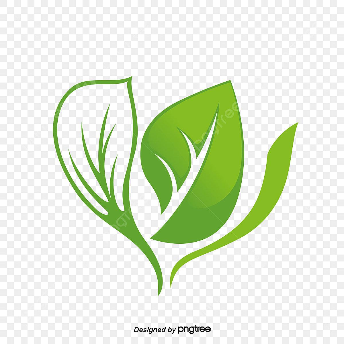 تصميم شعار ورقة خضراء اوراق خضراء شعار حماية البيئة Png وملف Psd للتحميل مجانا