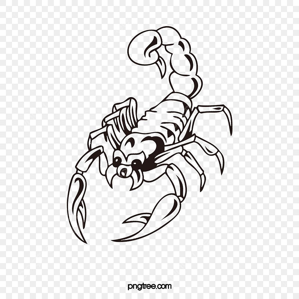 Le Dessin De Tatouage Main Scorpion Dessin Anime Peinte A La Main Les Scorpions Fichier Png Et Psd Pour Le Telechargement Libre