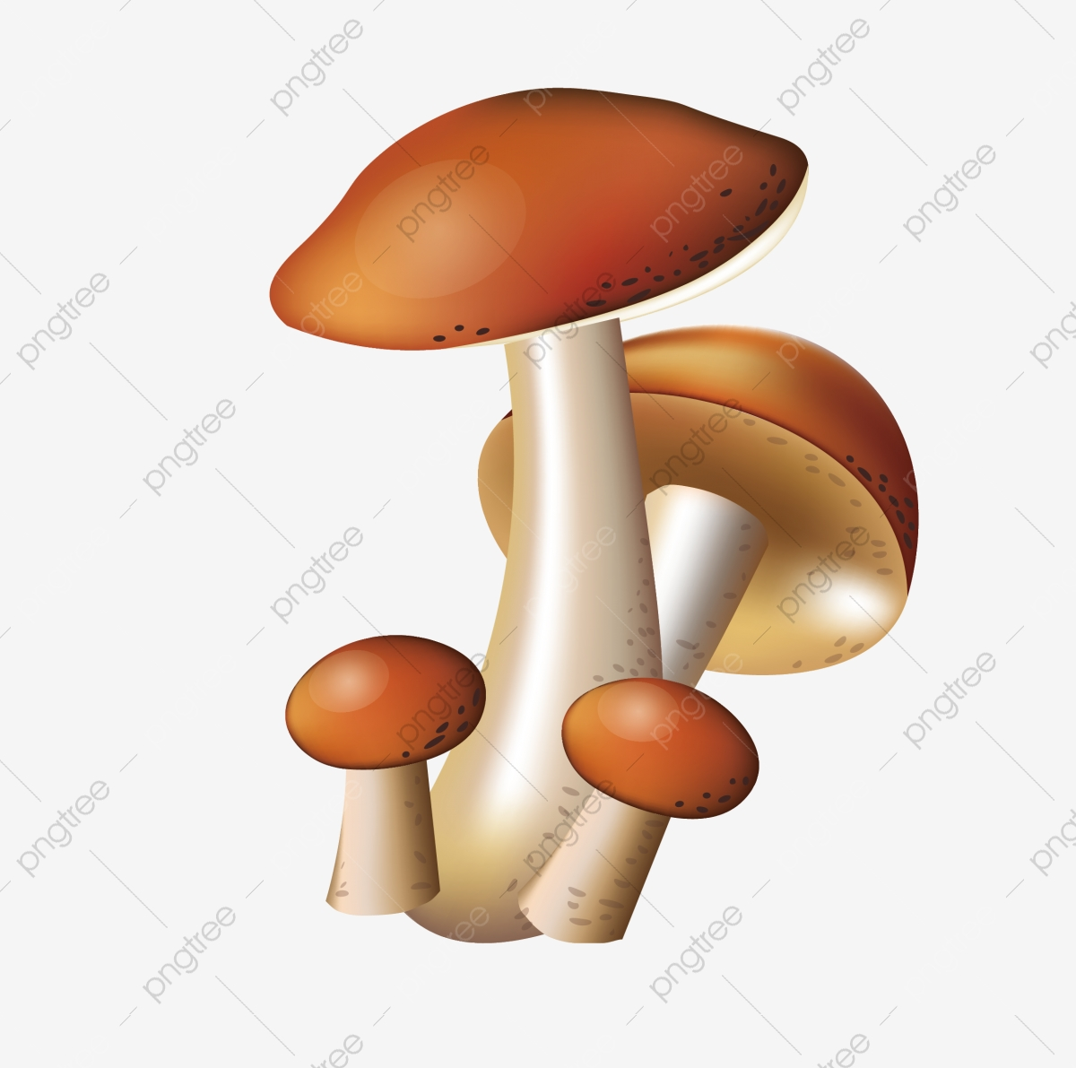 Hd Mushroom Mushroom Mushroom Clipart Mushroom Vegetables Png And Vector With Transparent Background For Free Download 700+ vectors, stock photos & psd files. https pngtree com freepng hd mushroom mushroom 2163406 html