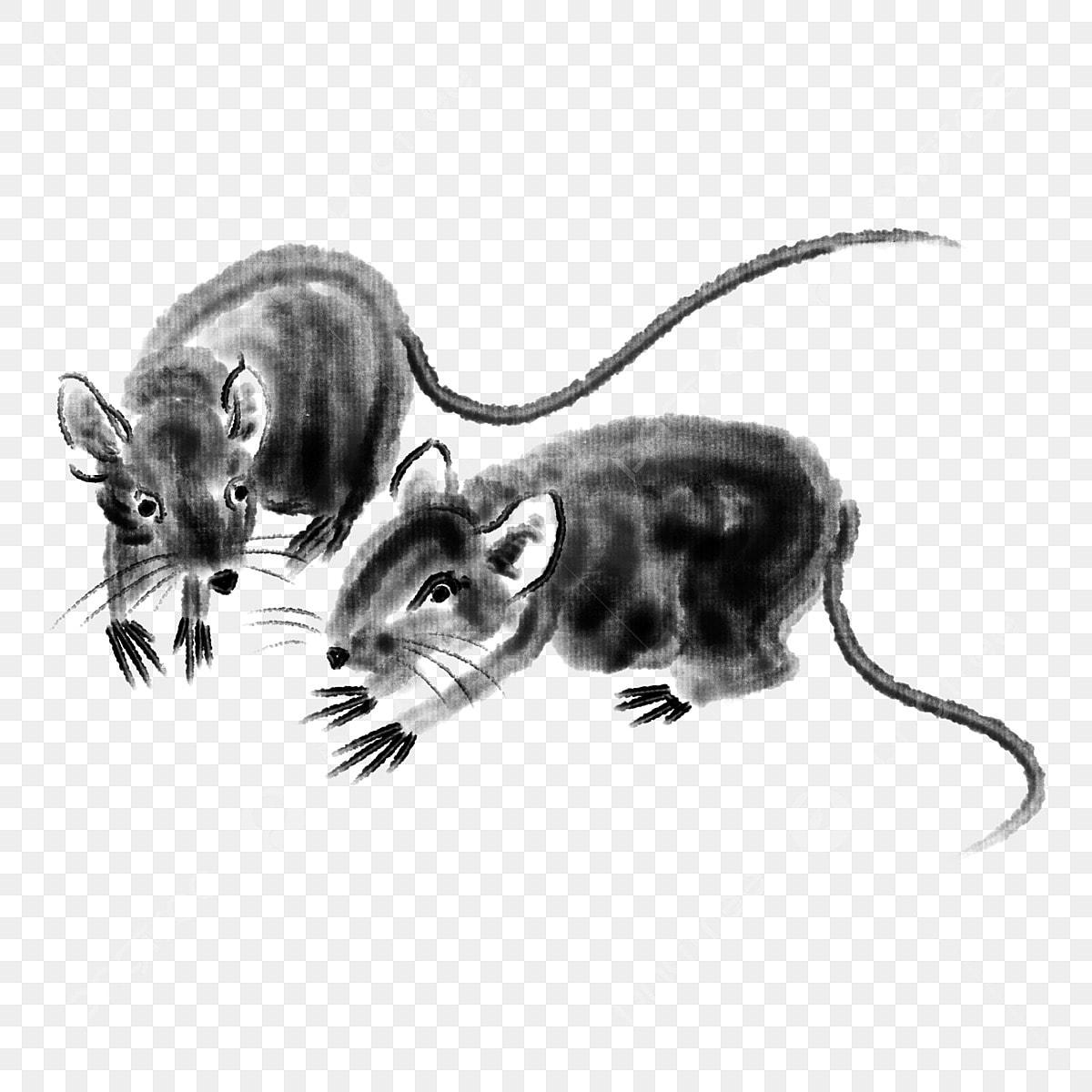 Dos Ratones De Caricatura Cartoon Raton De Dibujos