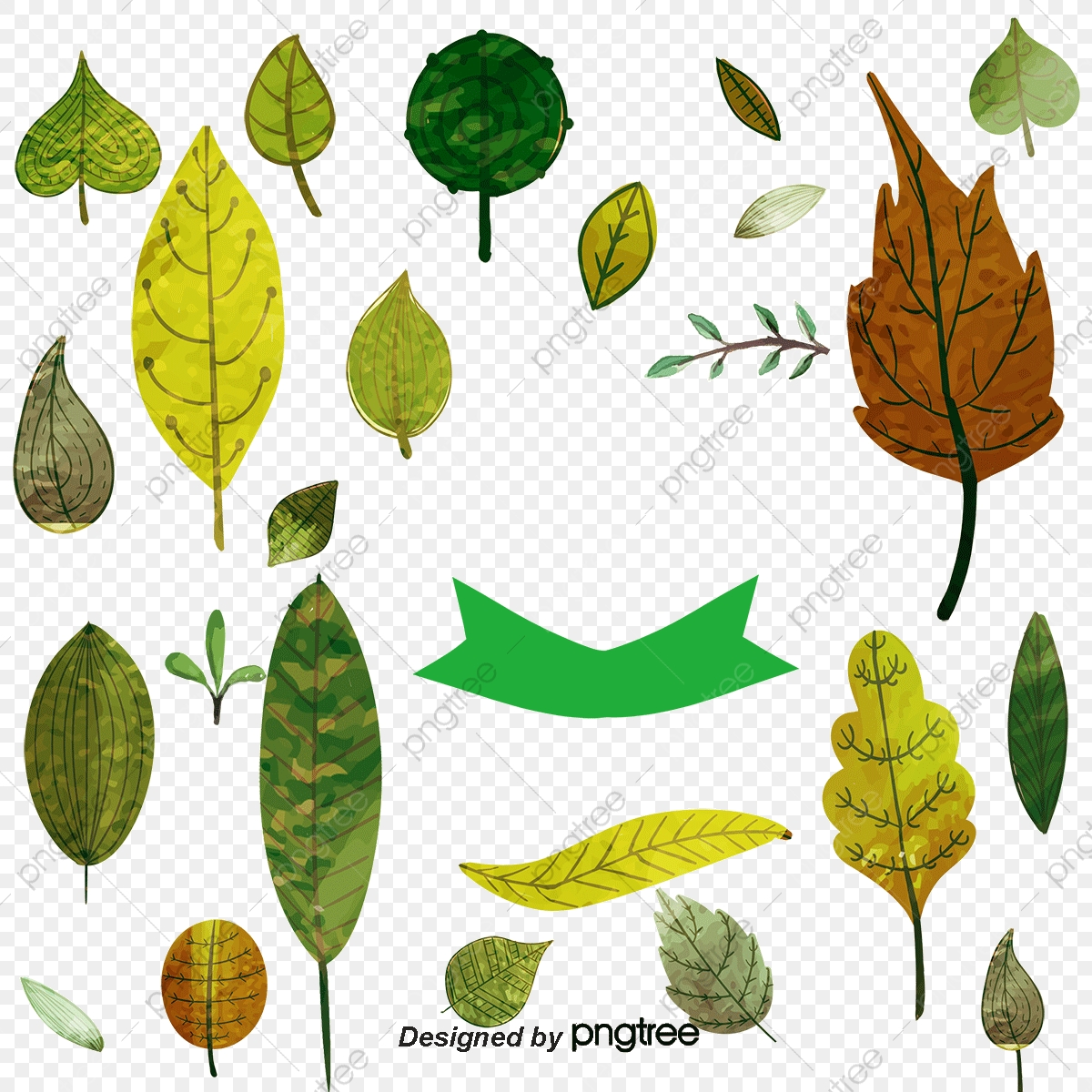 commercial use resource  upgrade to premium plan and get license  authorization upgradenow � vector diagram leaf