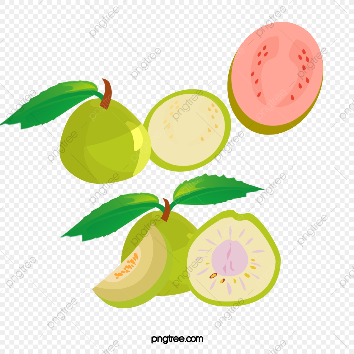 Guava Fruit Hd Images Free Download