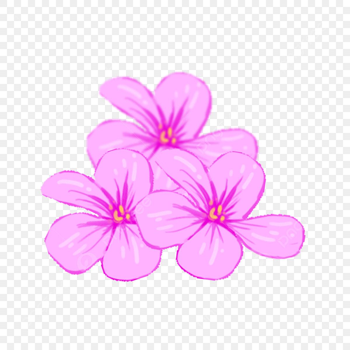 無料ダウンロードのためのすみれの撮影 実物 花卉 花 Png画像