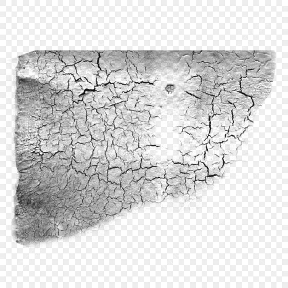 Rock crack. Wood clipart png transparent