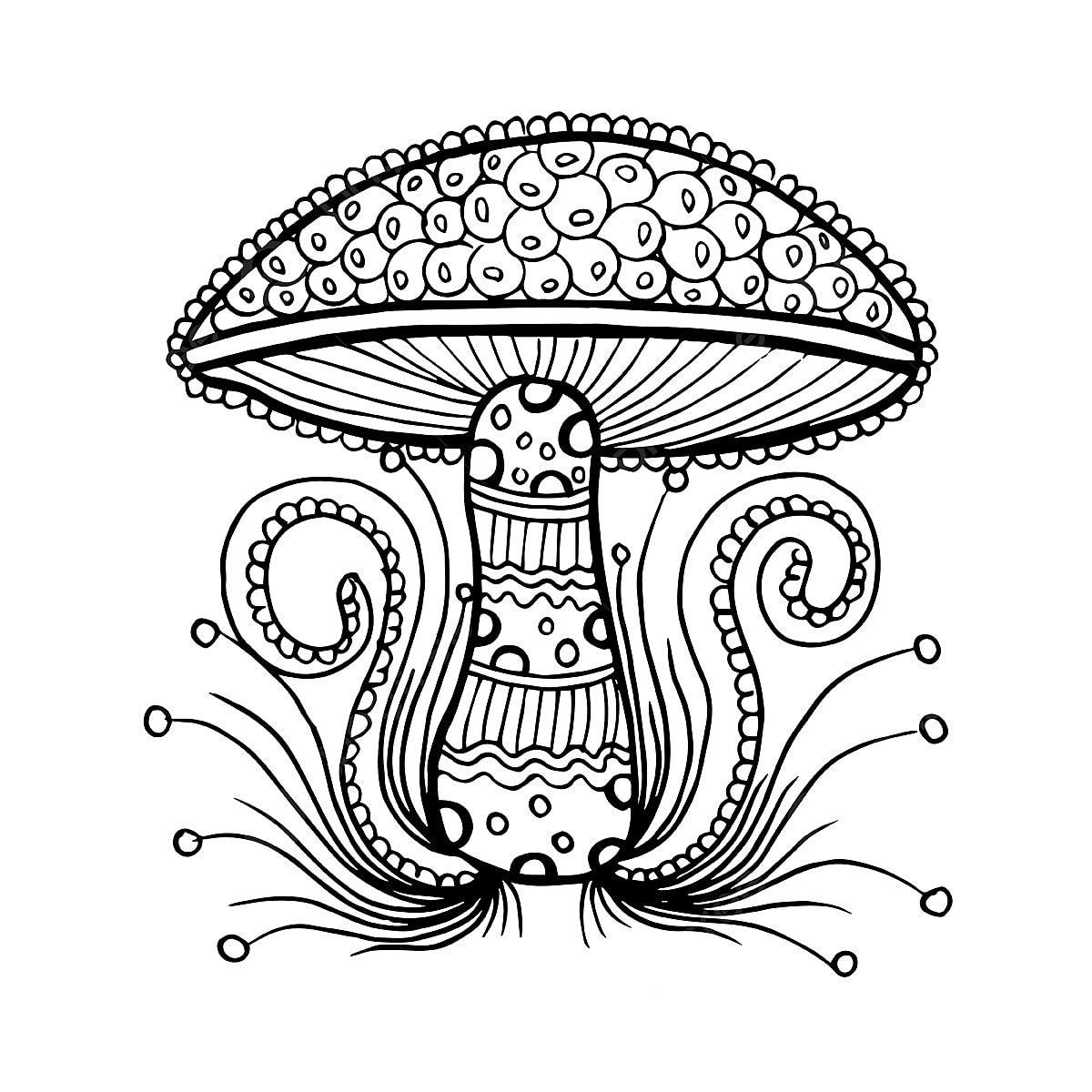 Schönen Handgezeichneten Schwarz Weiß Pilz Hand Gezeichnet Schwarzen