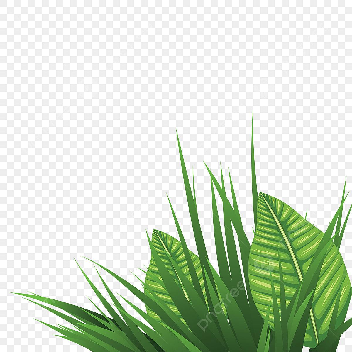 Трава с листьями | Бесплатный вектор