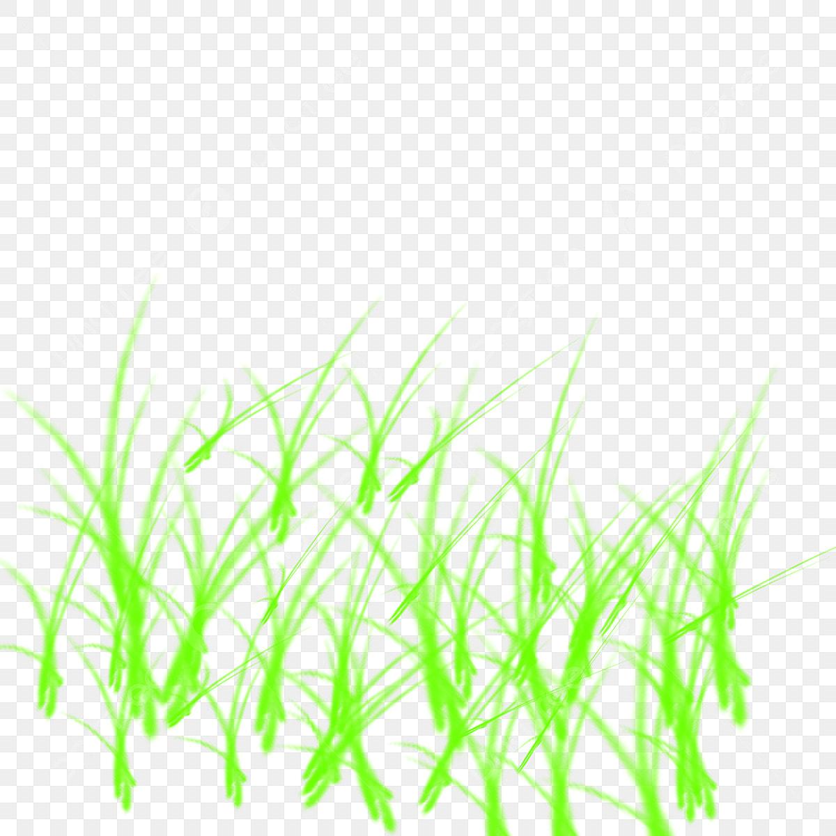 Grass Texture Background, Grass Png Texture, Grass Png For Photoshop