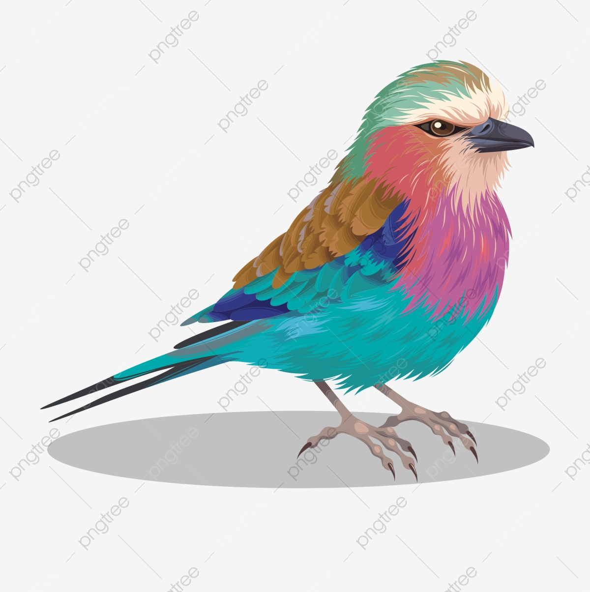 Colorful love bird clipart. Commercial use GIF, JPG, EPS, SVG clipart #  130491   Graphics Factory