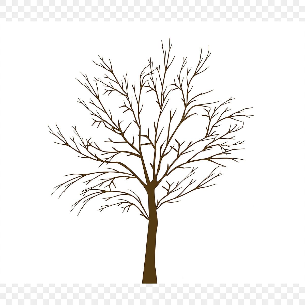 Pokok Pokok Yang Indah Dan Dinding Unsur Unsur Pokok Pokok