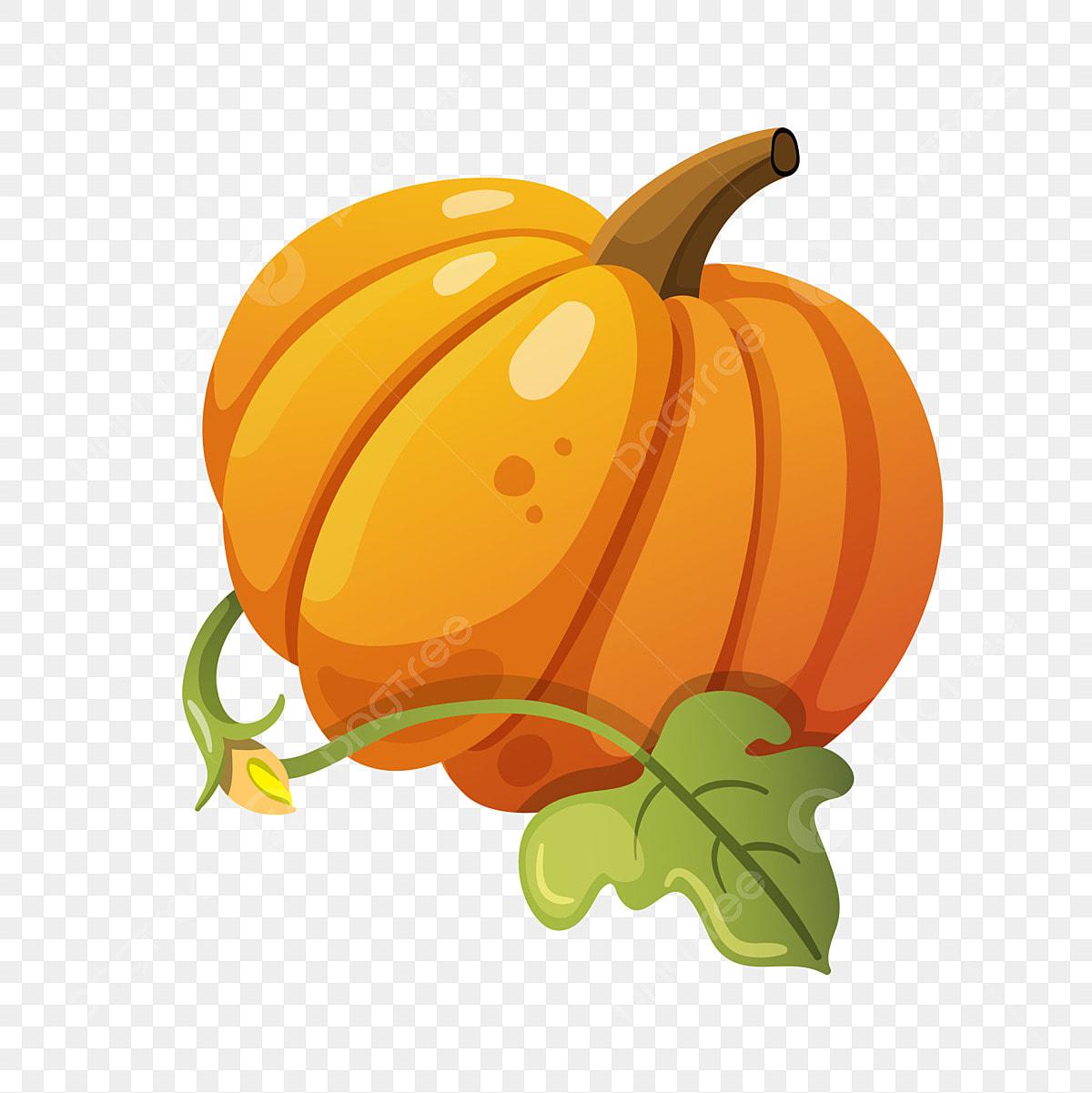 Halloween Pumpkin Cartoon Images.Beginning Of Autumn Autumn Pumpkin Summer Pumpkin Halloween
