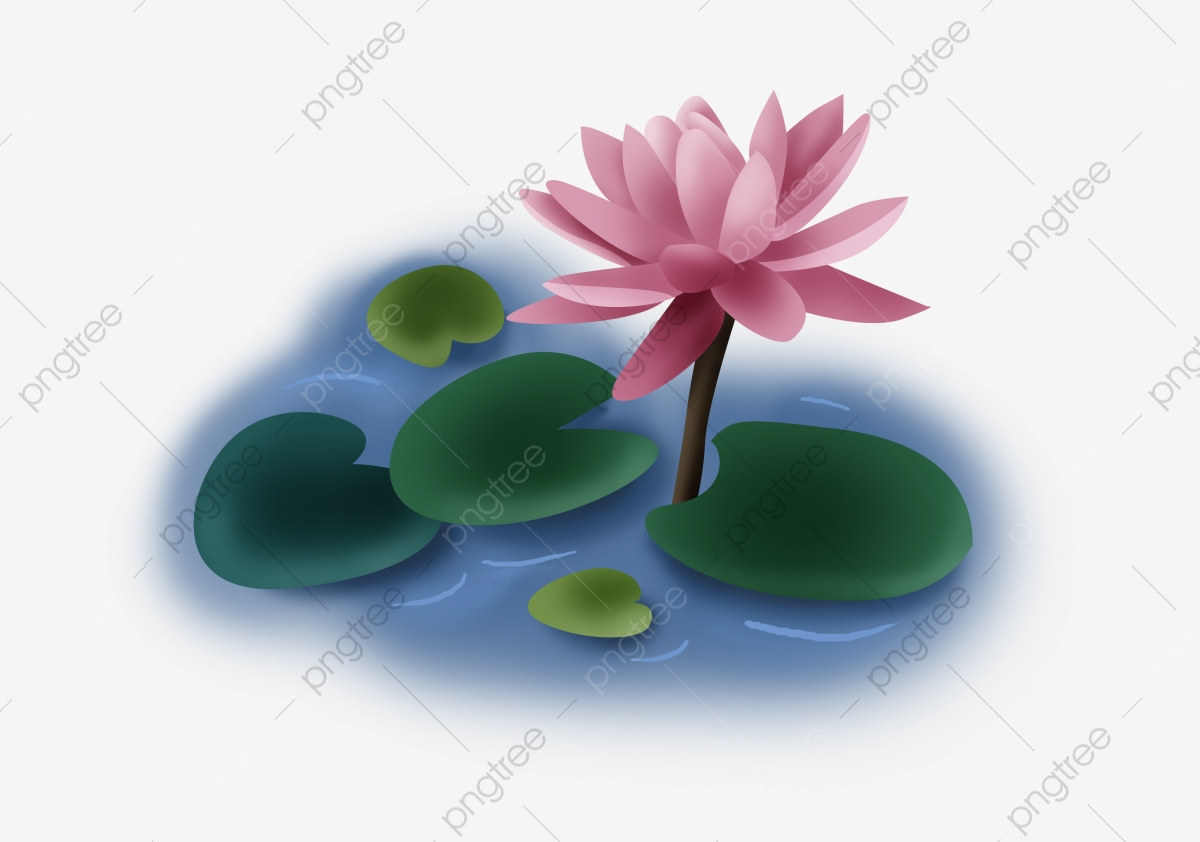 Low Poly Origami Lotus Bud Pink Water Lily Triangle Flower — Stock ... | 842x1200