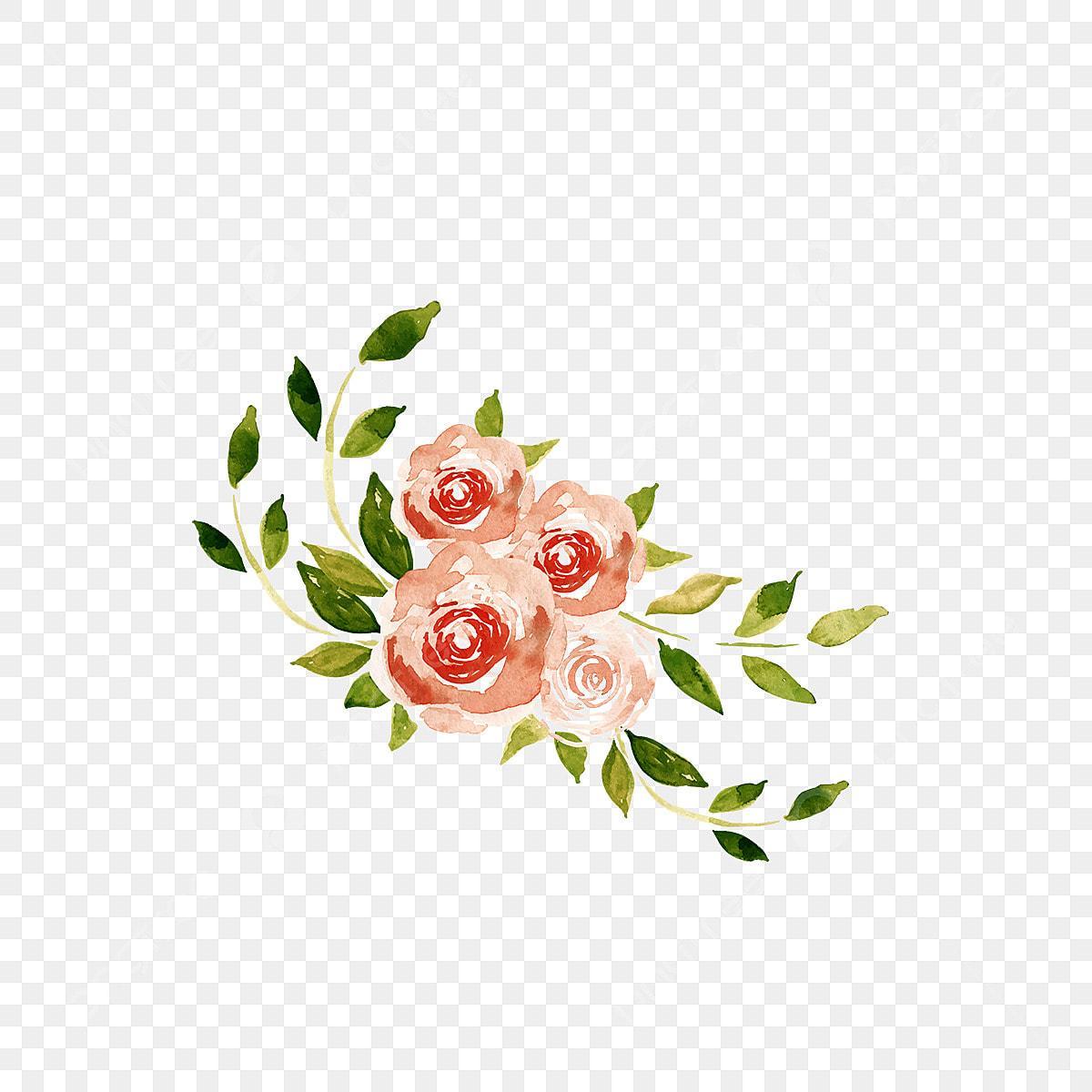 ورد وردي بي إن جي الزهور الوردية اوراق اشجار Png والمتجهات للتحميل مجانا