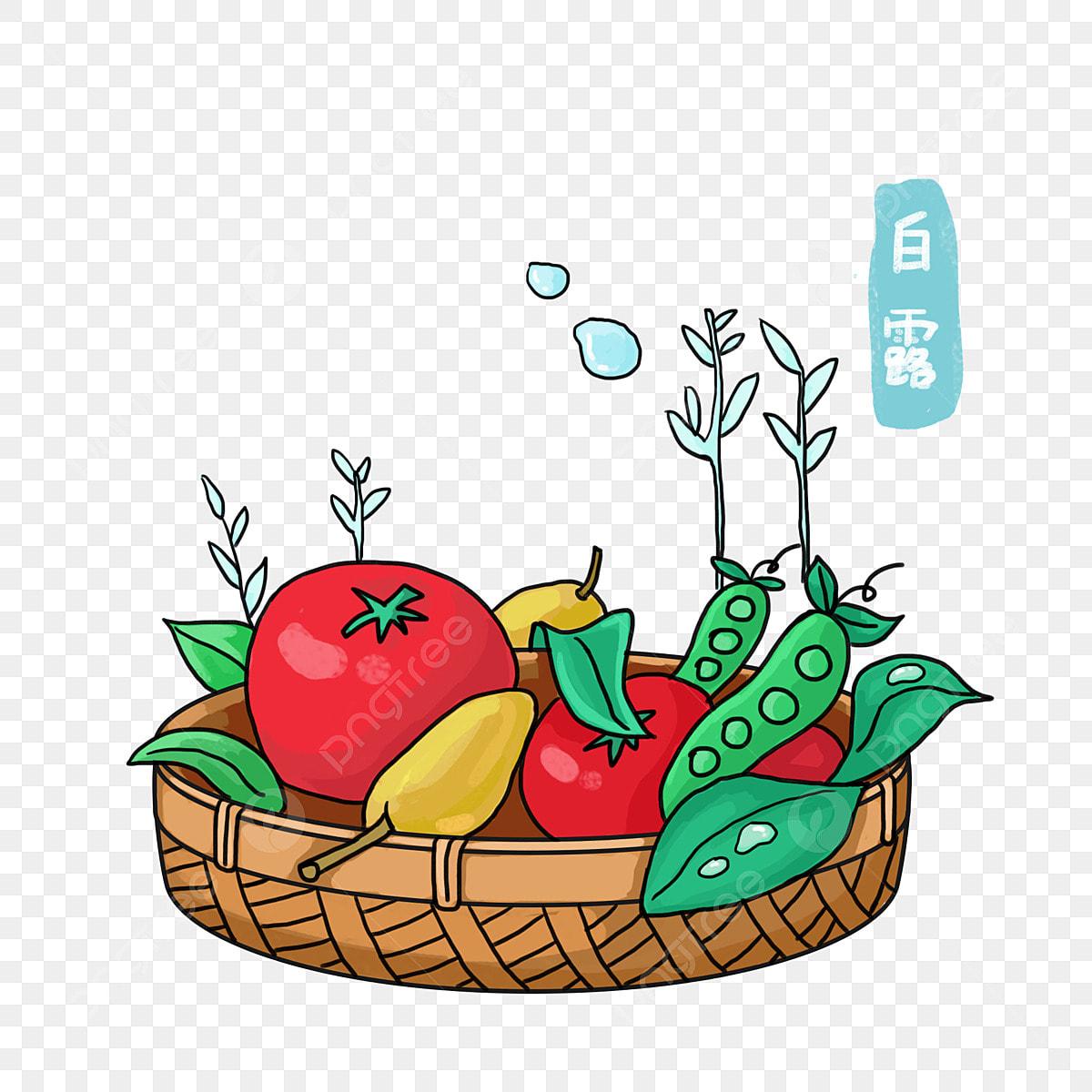 ندى أبيض الفاكهة كرتون الفواكه مرسومة باليد التوضيح داخل سلة ونسج سلة من الخيزران الخيزران سلال التوضيح الكرتون و بطيخ الخيزران سلال و بطيخ كرتون التوضيح داخل سلة الفواكه Png وملف Psd