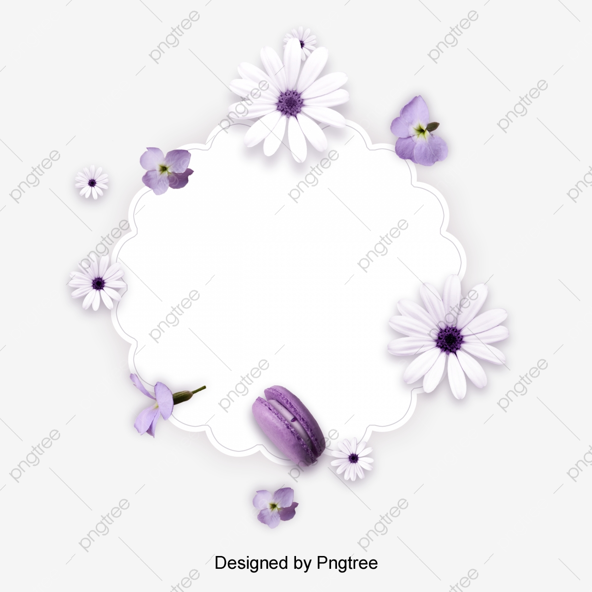 White Purple Flower Little Daisy Flower Card Butterfly Flower Illustration Valentines Day Flower Border Valentines Day Illustration Flower Png Transparent Clipart Image And Psd File For Free Download
