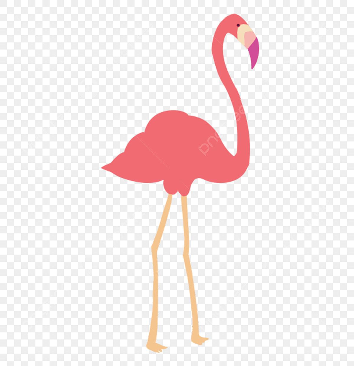 Animal Flamingo Illustration Flying Bird, Pink, Flamingo ...