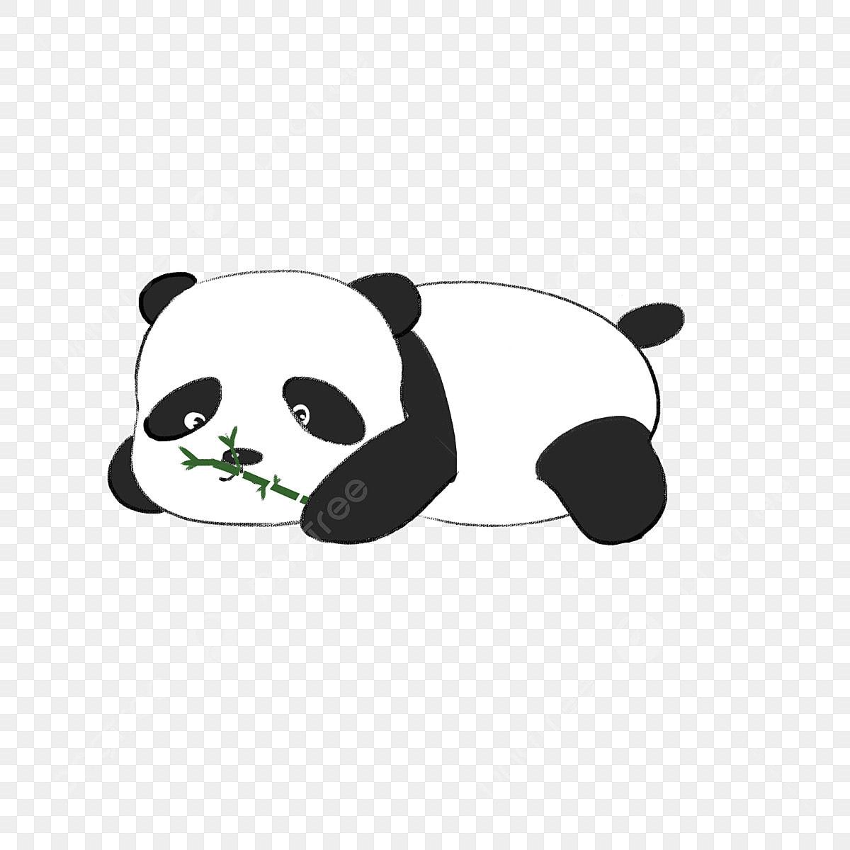 Beau Panda Géant Petit Panda Dessiné à La Main Dessin Animé