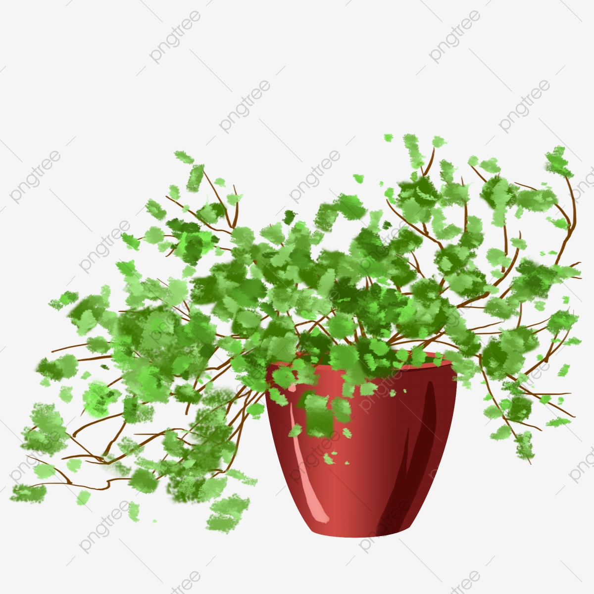 Potted Plant Beautiful Plants