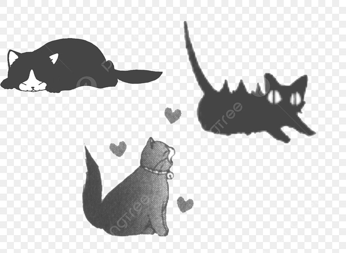 Chat Noir Carte 300 Pixels Téléchargement Dune Grande Image