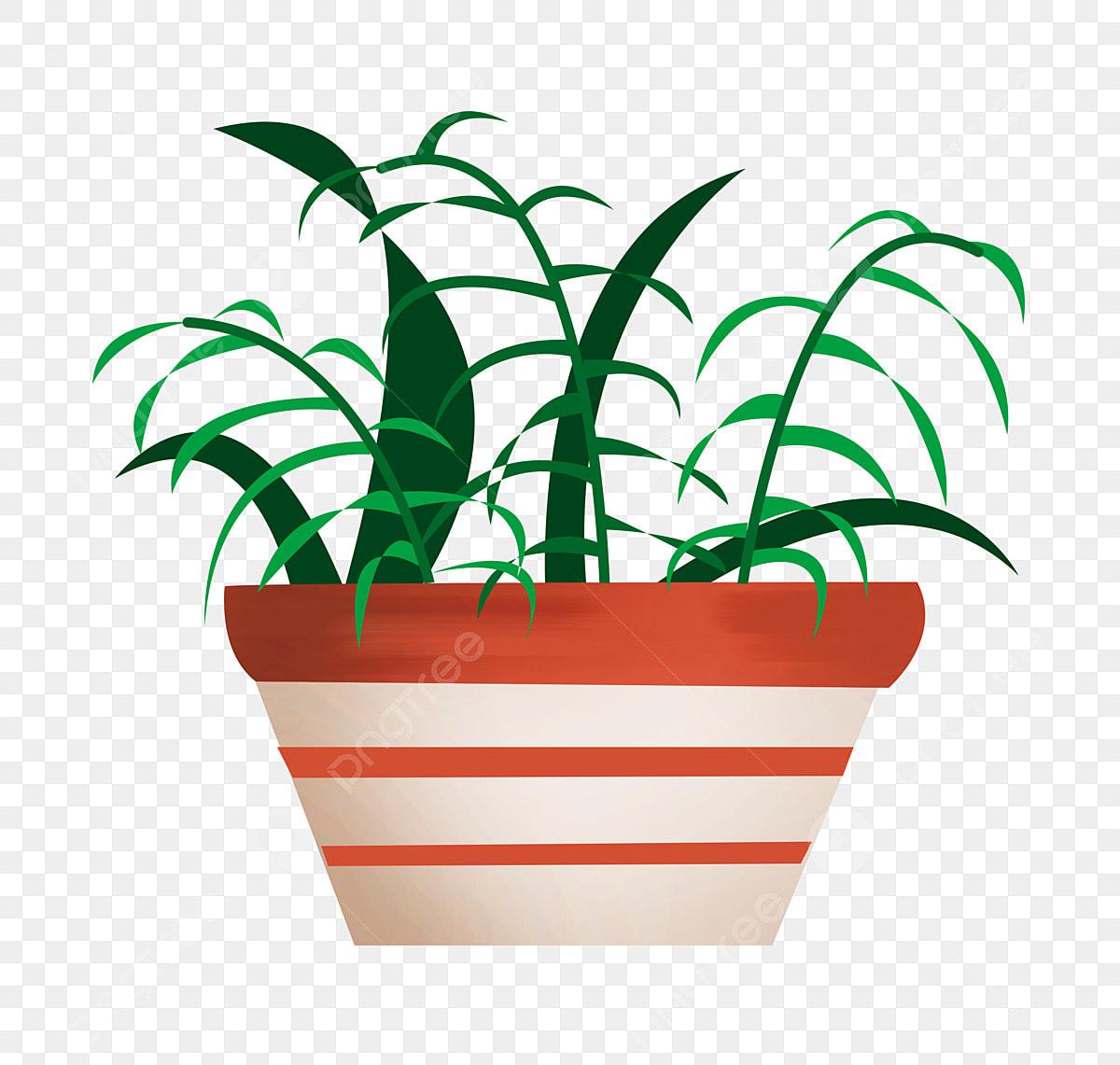 Dessin Animé Plante Verte Pot De Plante Pot De Maison Main