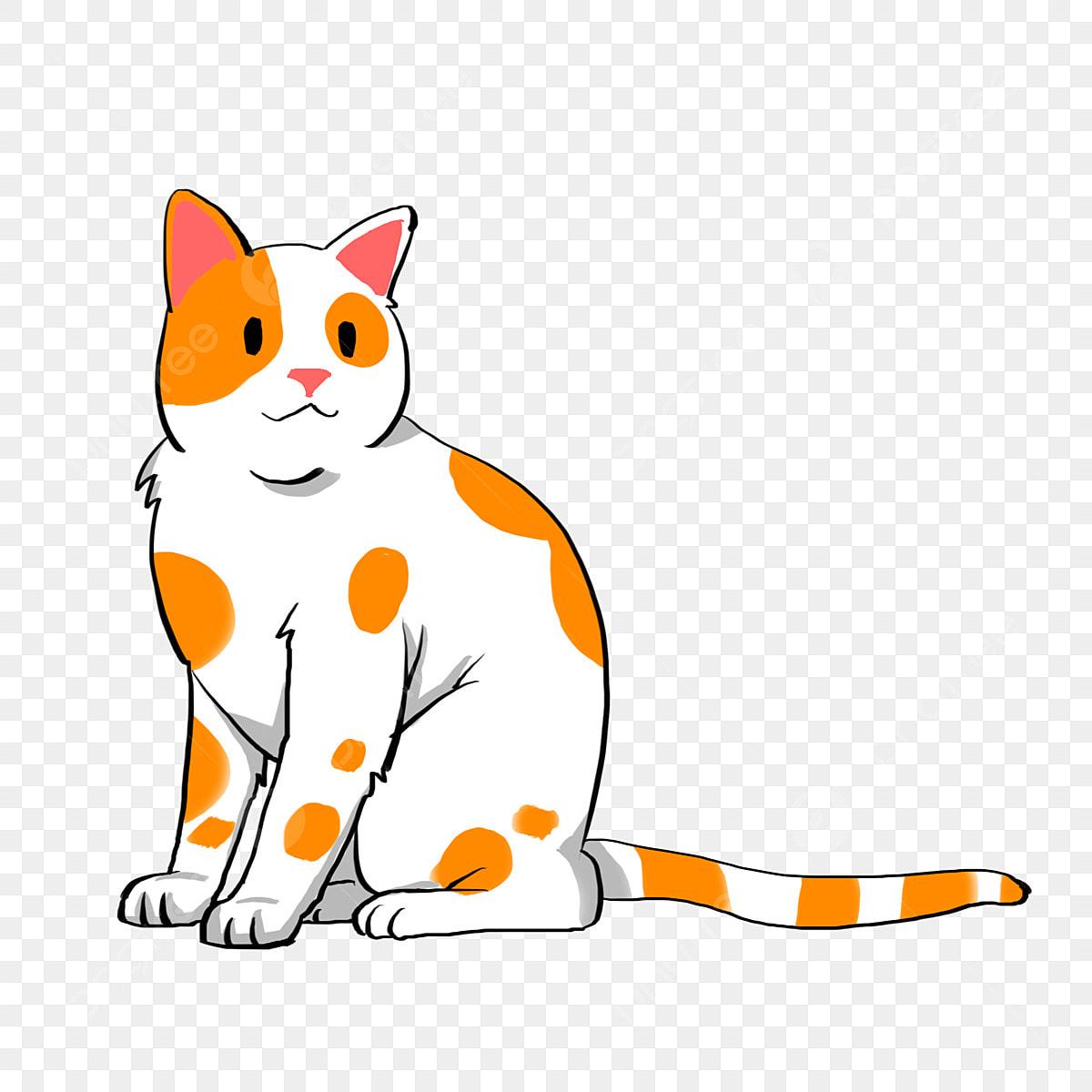 Mignon Petit Chat Gros Yeux Chaton Illustration De Beau Chat