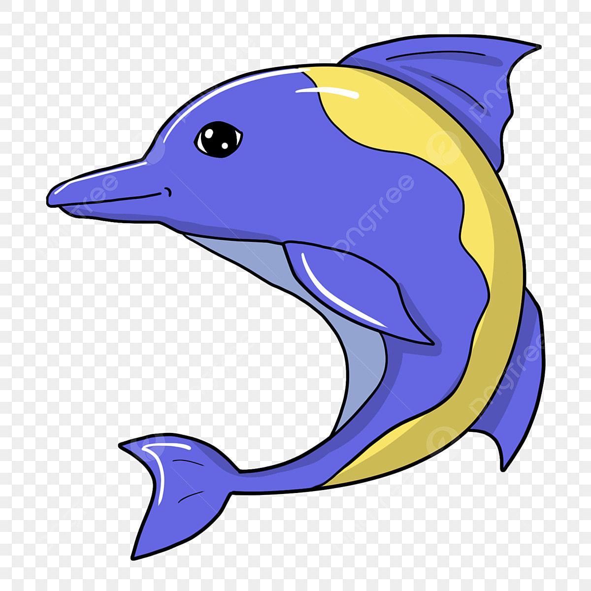 840 Gambar Binatang Mamalia Laut Terbaru