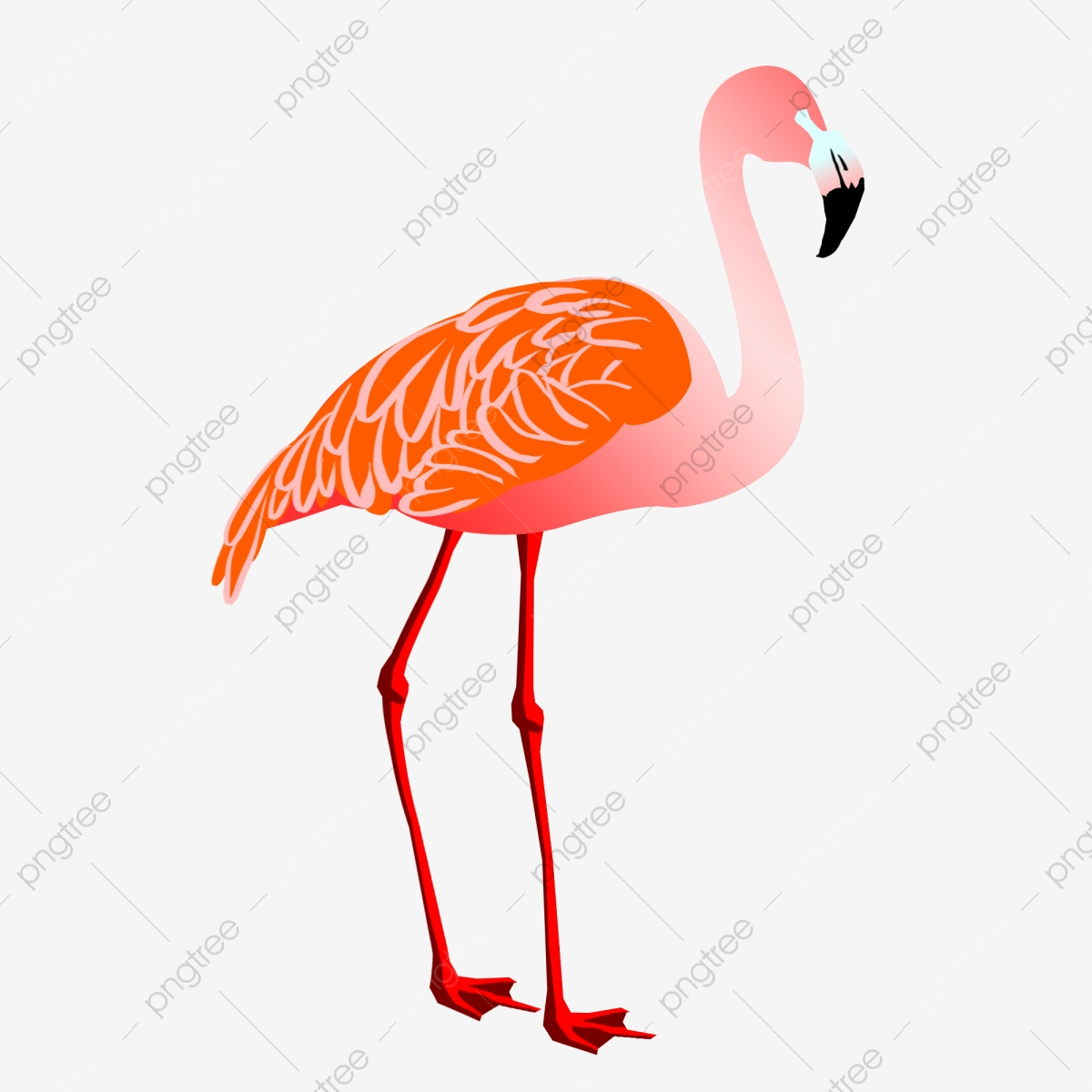 Flamingo Animal Illustration Watercolor Animal Long Legs ...