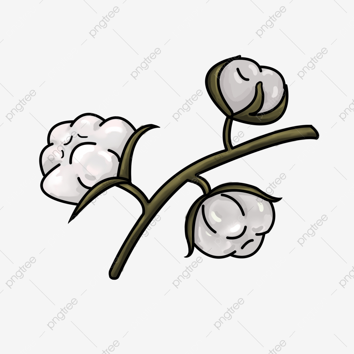 Branche Fleur De Coton dessiné à la main récolte coton branche de fleur, feuille de