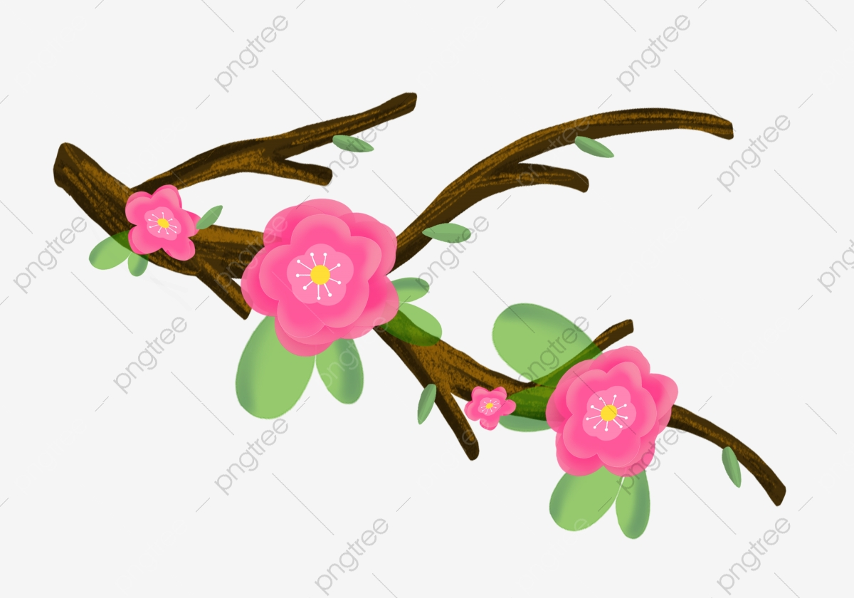 Pink Flowers Yellow Flower Pink Petals Yellow Branches Green