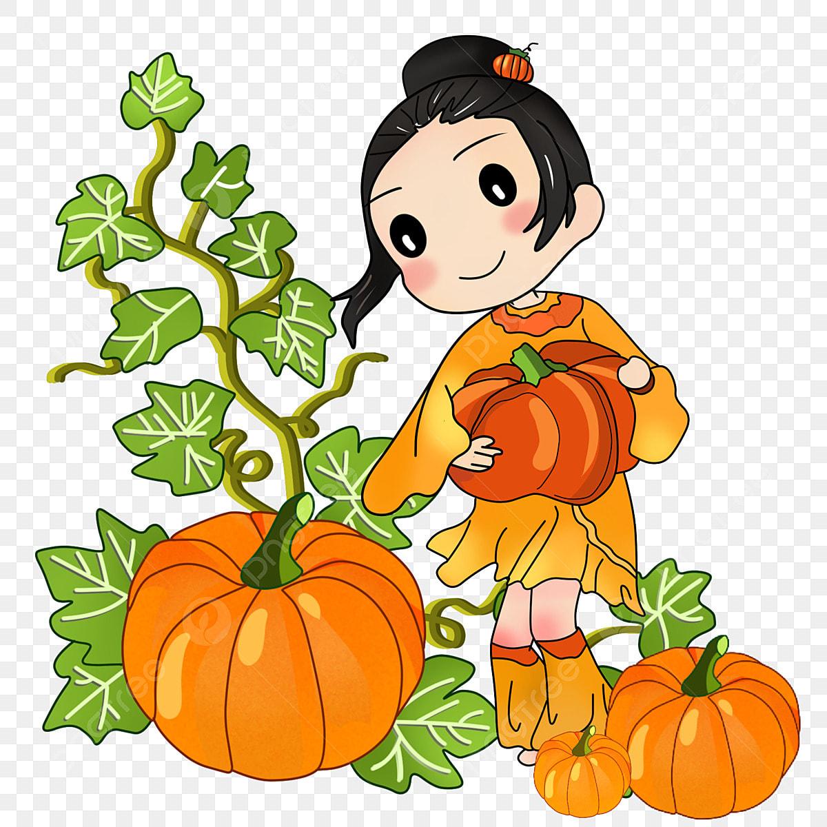 Pumpkins And Such – T Cupp's Junior Farm Friends