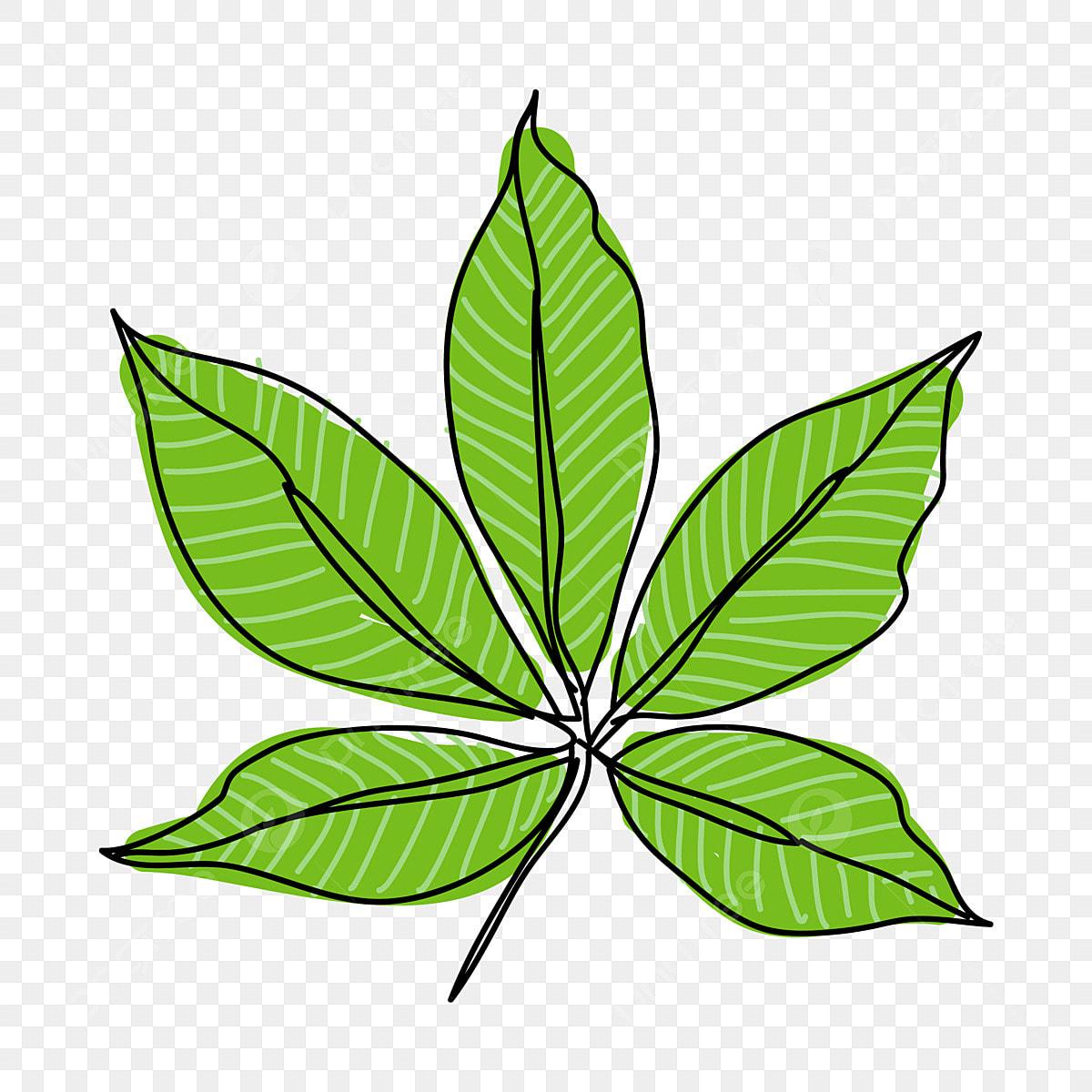 Caricatura Folhas De Desenhos Animados Folhas De Desenhos Animados Folha De árvore Folha Verde Folhas Verde Imagem Png E Vetor Para Download Gratuito