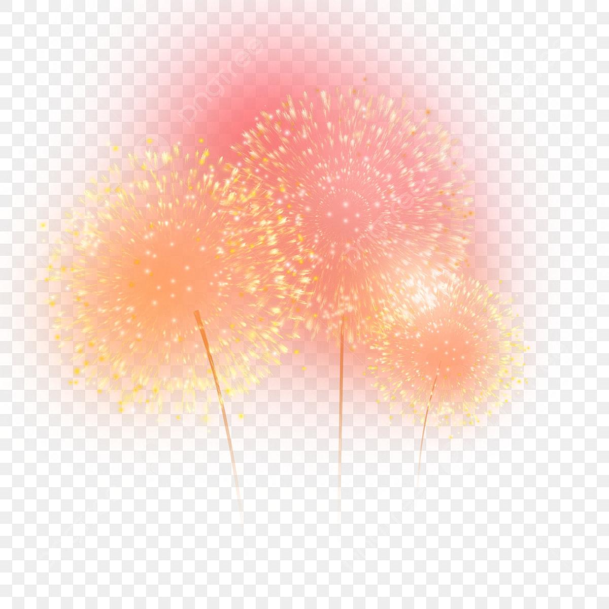 Fireworks Fireworks Orange Fireworks Salam Bunga Api Yang