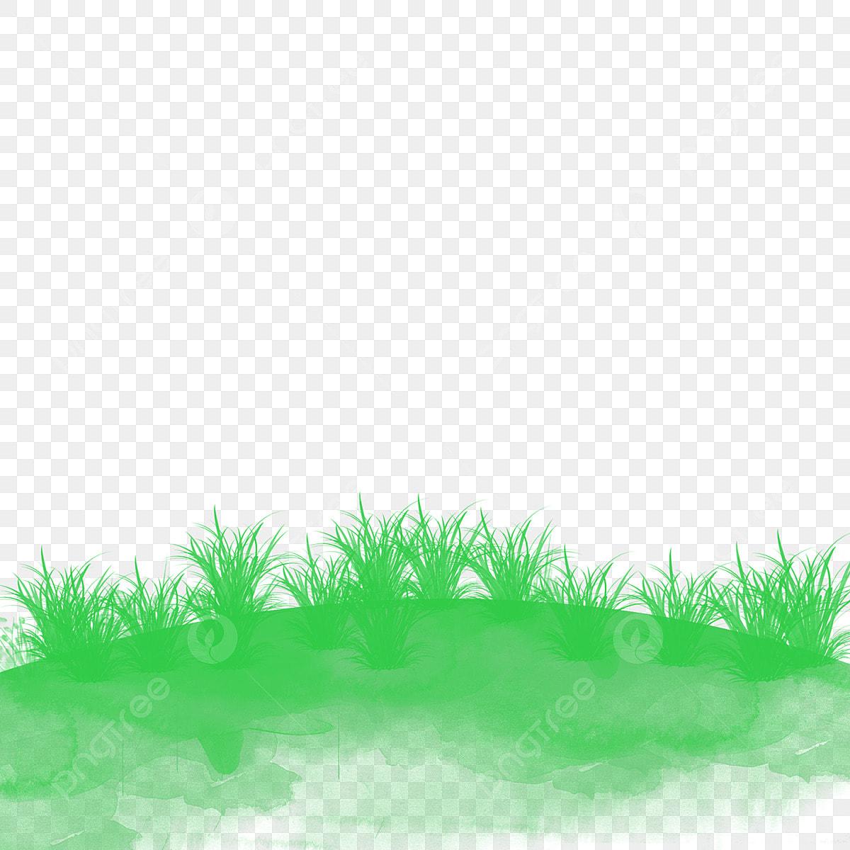 Fresh Green Grass Grassland Grass Flower Green Grass Cartoon Green Grass Png Transparent Clipart Image And Psd File For Free Download