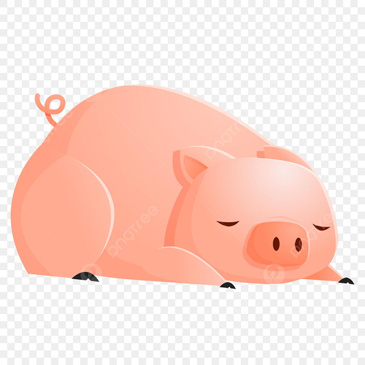 Pig sleeping. Go to bed piggy