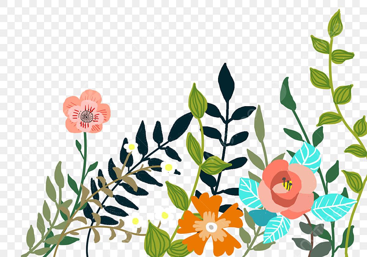 Dessin De Fleurs Colorées Dessinées à La Main Dessin Animé