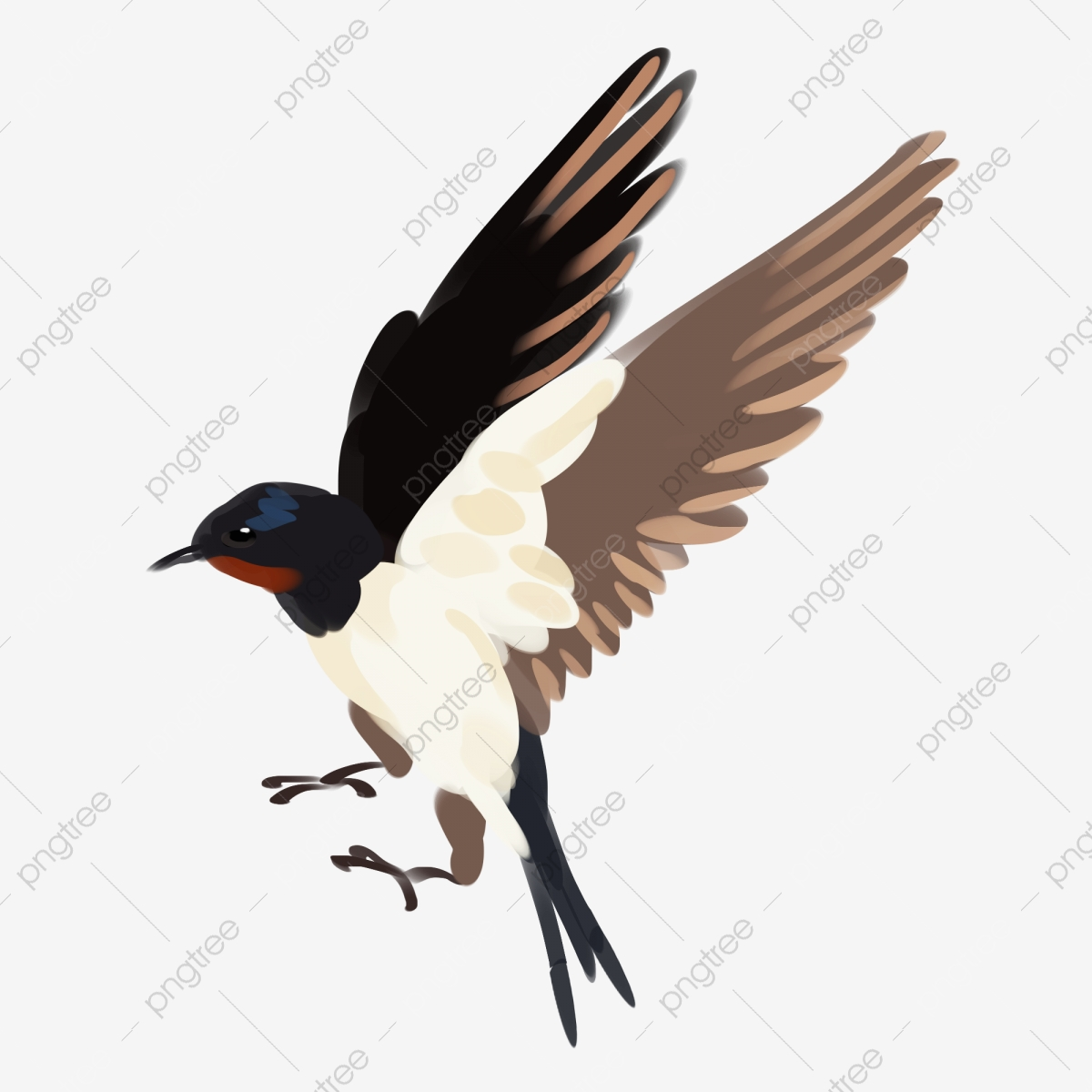 black swallow png images vector and psd files free download on pngtree https pngtree com freepng hand drawn swallow illustration open wings scissors tail black swallow 3903158 html