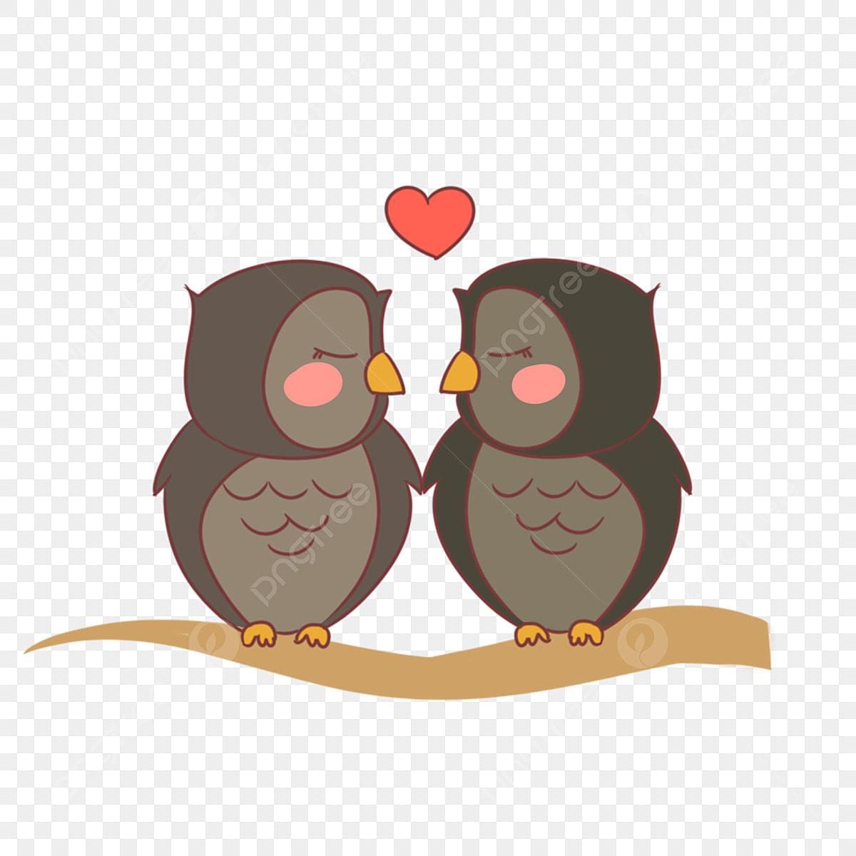 フクロウカップルイラスト ふくろう 落下フクロウ かわいいフクロウ 鳥 ふくろう 互いに愛し合う画像とpsd素材ファイルの無料ダウンロード Pngtree