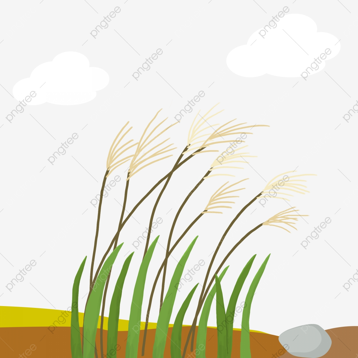 Reed Shore Ashore Reed Grass Blue Sky White Clouds Png Transparent Clipart Image And Psd File For Free Download