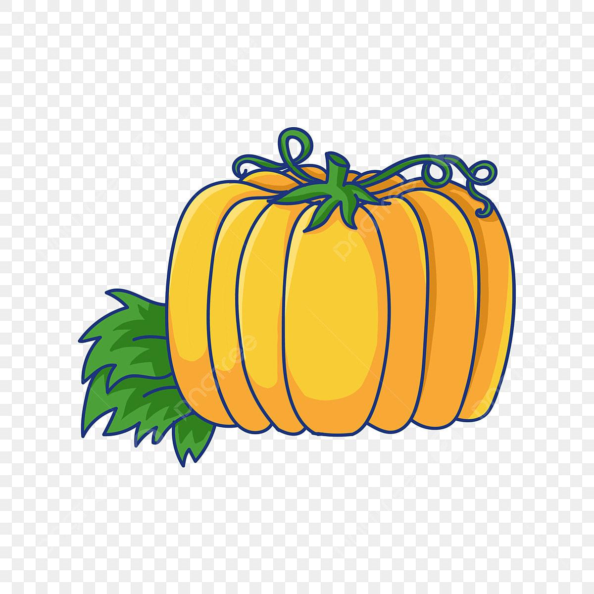 Autumn Pumpkin PNG Clipart | Fall clip art, Pumpkin pictures, Pumpkin images