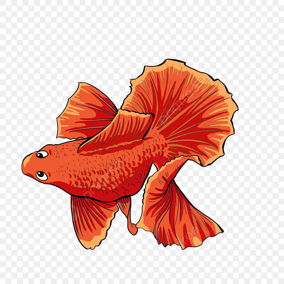 Peixinho Dos Desenhos Animados Peixinho Vermelho Peixinho Lindo