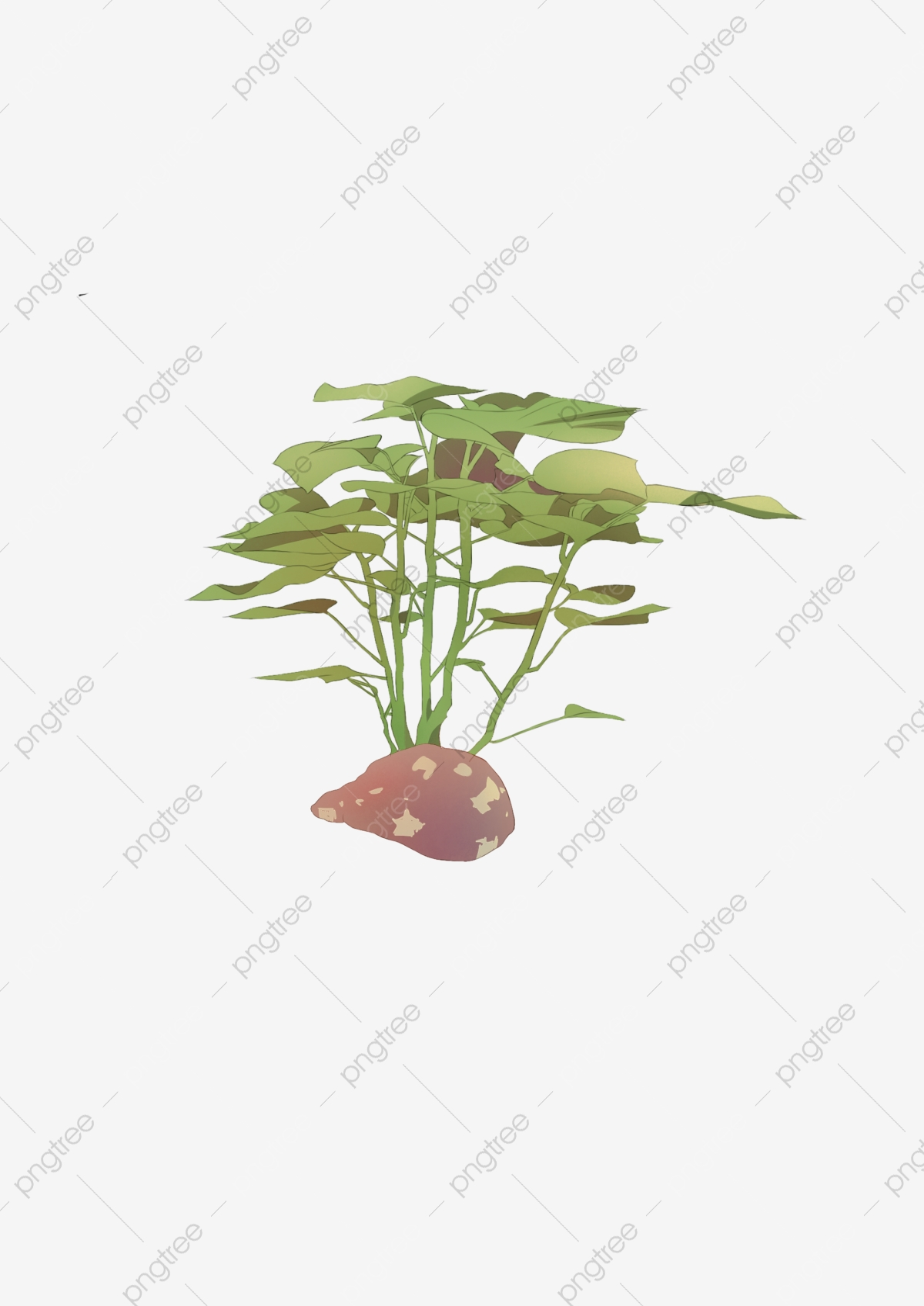 Commercial Tableau De Dessin Animé Nourriture Plante
