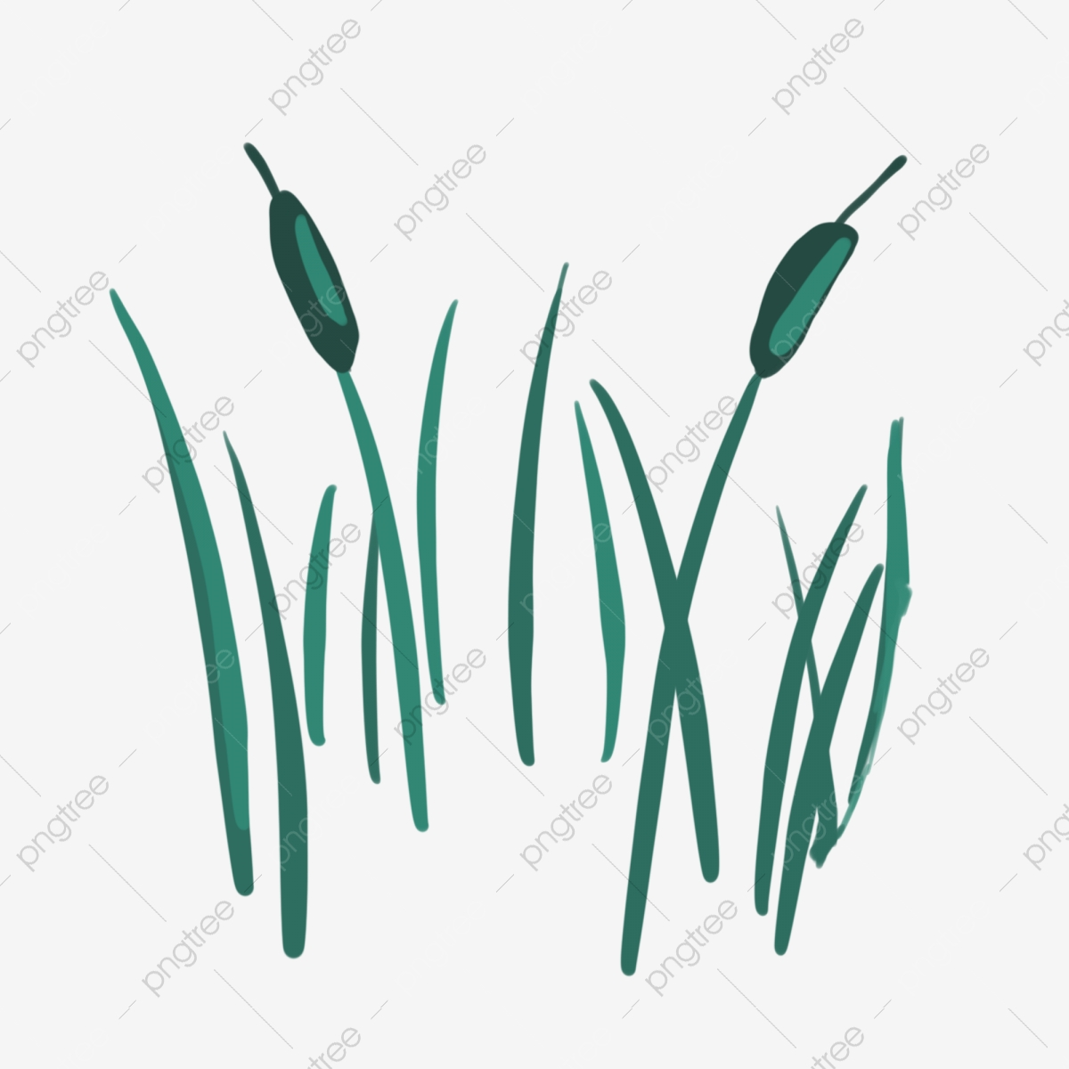 Dark Green Cartoon Green Plant Plant Reed Rural Spring Grass Green Reed Png Transparent Clipart Image And Psd File For Free Download
