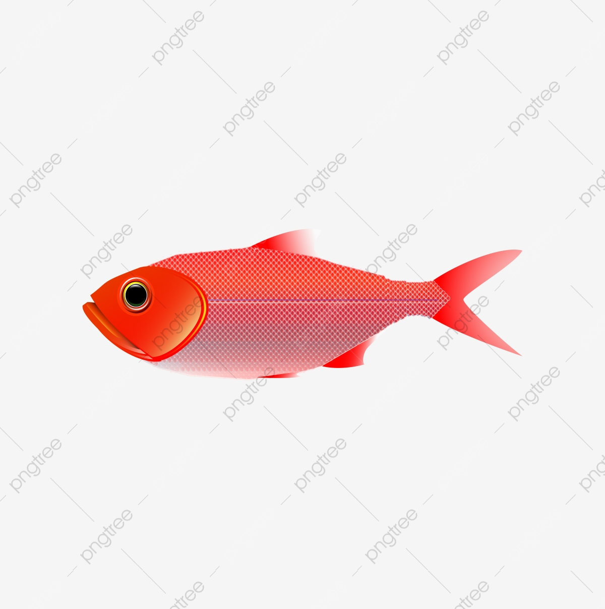 Fish Fish School Cartoon Fish Cartoon Deep Sea Underwater World Animal World Png And Vector With Transparent Background For Free Download