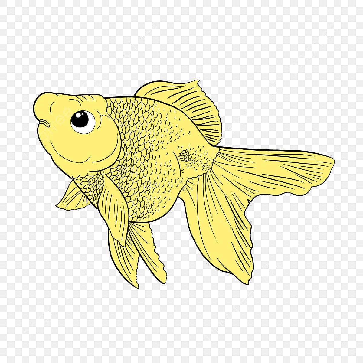 Peixinho Peixinho Amarelo Peixe Dos Desenhos Animados Peixinho Dos