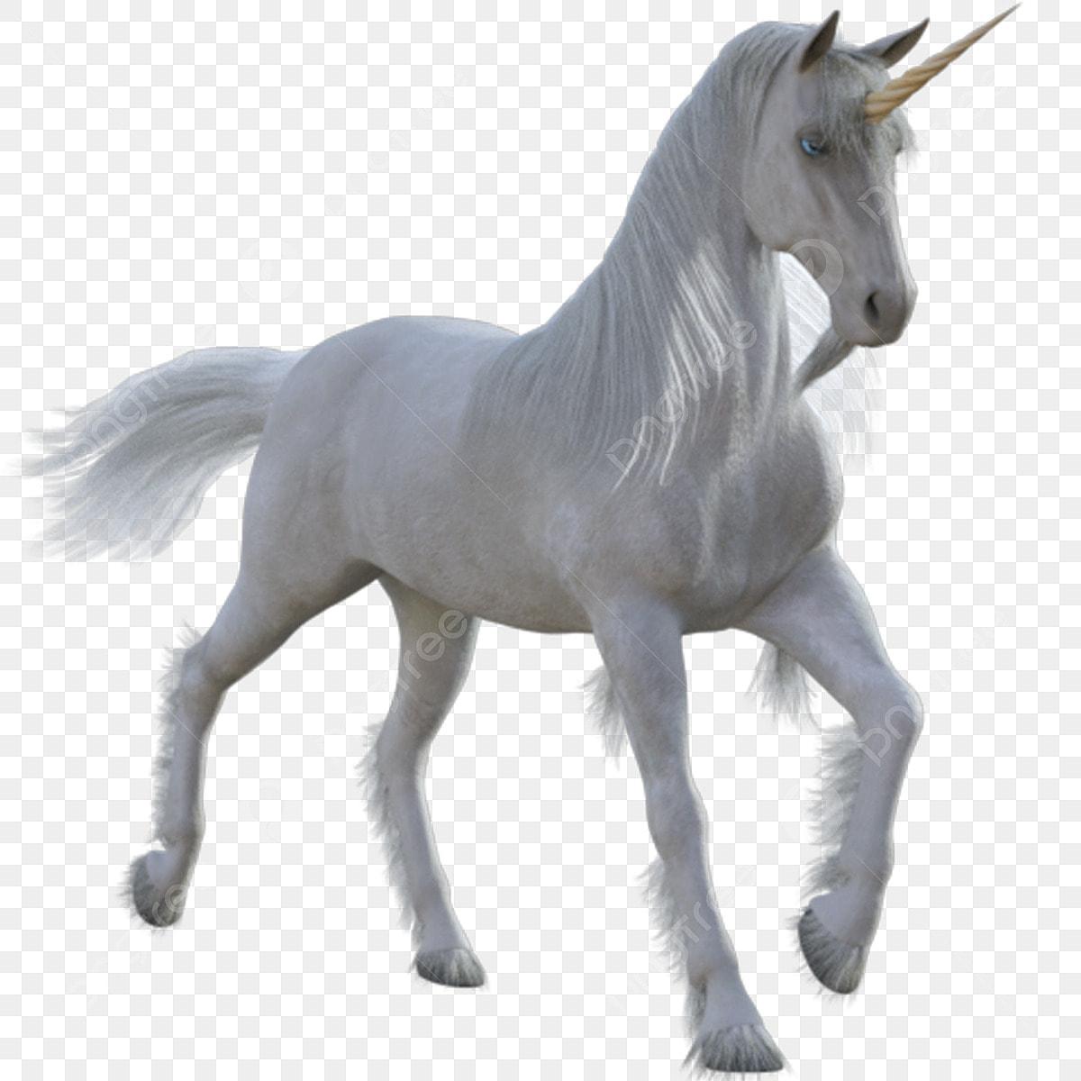 بالون متحرك شخصية الحصان