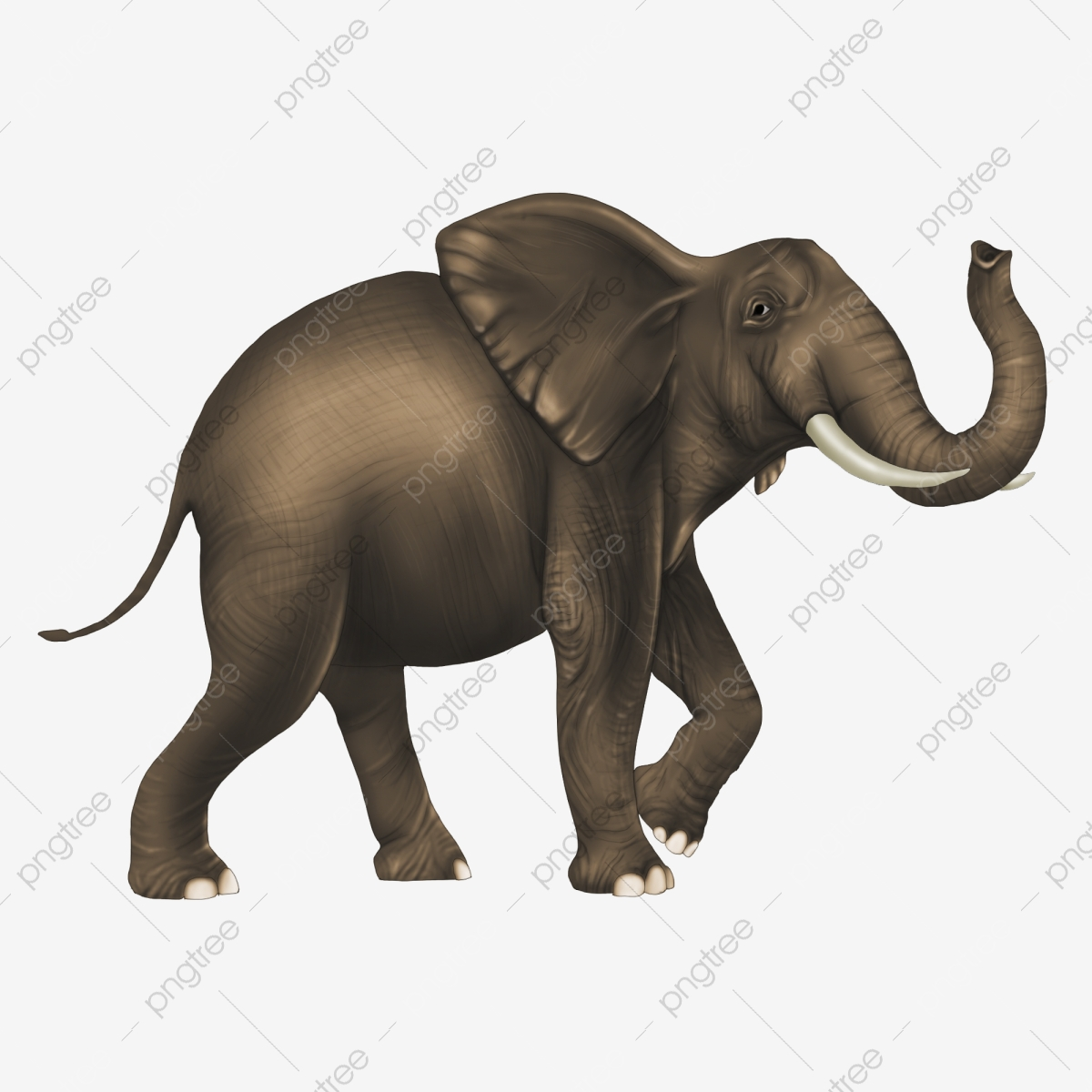 Elephant Png Background – When designing a new logo you can be inspired by the visual logos found here.