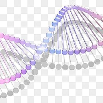 combination of spherical elements with dna molecular structure, Dna Molecule, Molecular Structure, Structural Combination PNG and PSD