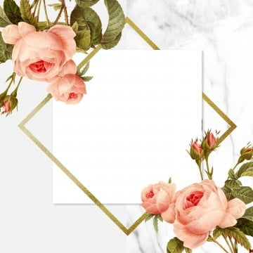 beautiful vintage floral frame, Rose, Frame, Blooming PNG and PSD