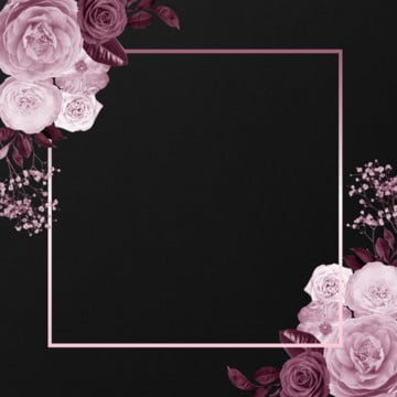pinky floral frame, Pinky Flowers, Rose, Frame PNG and PSD